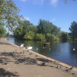 <b>New healthy spots in London </b>